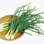 【旬の食材】(葉タマネギ) 栄養素と美味しい(葉タマネギ)の選び方【2月】