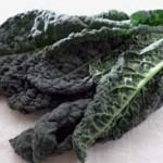 【旬の食材】(黒キャベツ) 栄養素と美味しい(黒キャベツ)の選び方【2月】