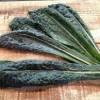 【旬の食材】(カーボロネロ) 栄養素と美味しい(カーボロネロ)の選び方【3月】