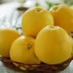 【旬の食材】(河内晩柑) 栄養素と美味しい(河内晩柑)の選び方【5月】