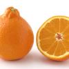 【旬の食材】(ミネオラ) 栄養素と美味しい(ミネオラ)の選び方【4月】