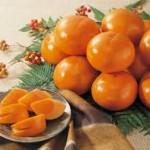 【旬の食材】(富有柿)栄養素と美味しい(富有柿)の選び方【12月】
