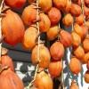 【旬の食材】(干し柿)栄養素と美味しい(干し柿)の選び方【12月】