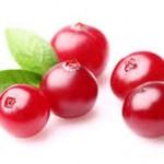 【旬の食材】(クランベリー)栄養素と美味しい(クランベリー)の選び方【11月】