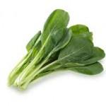 【旬の食材】(小松菜) 栄養素と美味しい(小松菜)の選び方【10月】