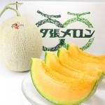 【旬の食材】(夕張メロン) 栄養素と美味しい(夕張メロン)の選び方【8月】