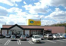 ランドロームフレンド 龍ケ崎店