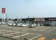 ナルス 柿崎店