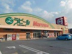 丸和豊田店