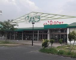 丸合平田店